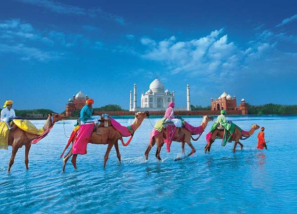 Индия, туры
